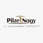 Pilze_logo_s_barna
